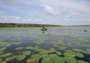 Протягом тижня виявлено більше 60 порушень, - Миколаївський рибоохоронний патруль